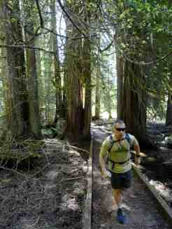 Running through an ancient cedar grove on the Moss Lake Loop © Craig Romano
