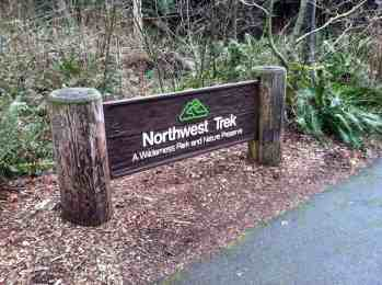 NW Trek Sign © Carrie Uffindell
