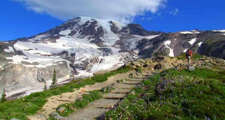 Paradise at Mount Rainier National Park