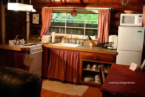 Copper Creek Log Cabin Kitchen