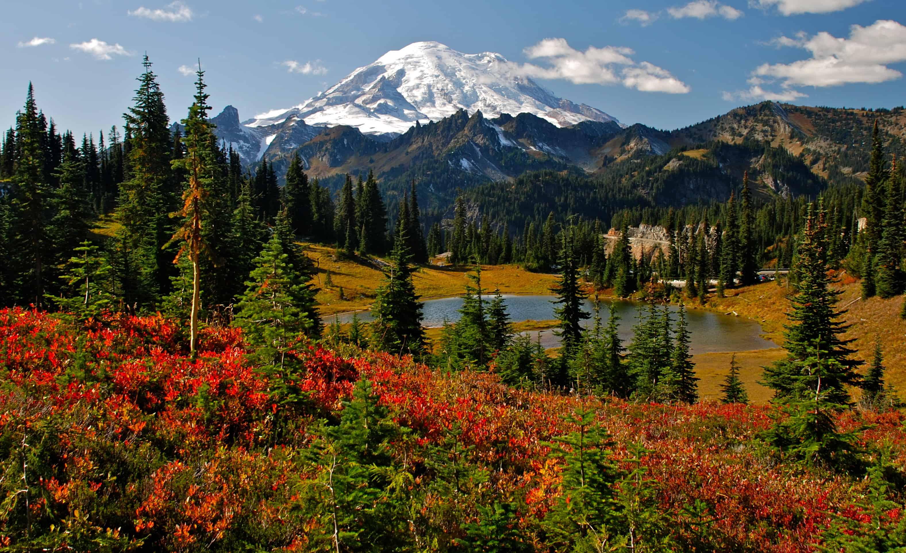 Seattle Washington Fall Skyline Wallpaper Mount Rainier Best Fall Hikes Events Festivals And