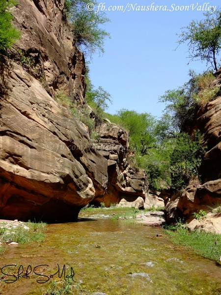 Nurshingh Phowar Springs Soon Valley