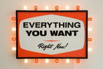 Everything You Want, Right Now! by Steve Lambert