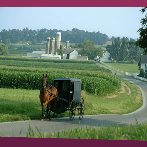 Visit The Amish