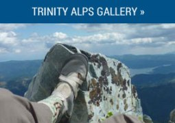 gallery_alps
