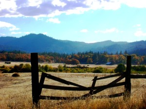 Fall in Hayfork 003