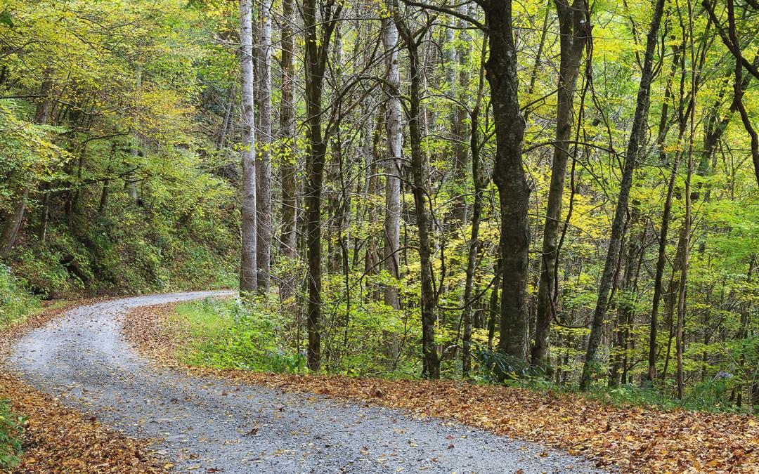 Smith Mountain Trail #69