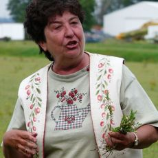 Cranberry Blossom Day is June 27