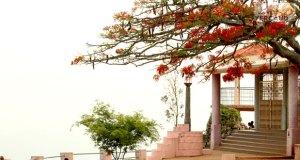 Pagoda Point yercaud