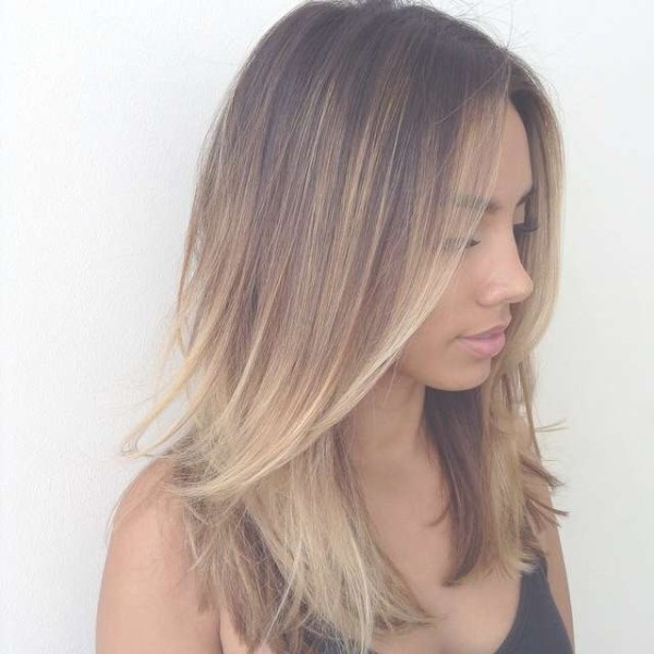 30 Medium Length Straight Layered Hairstyles 2018 Hairstyles