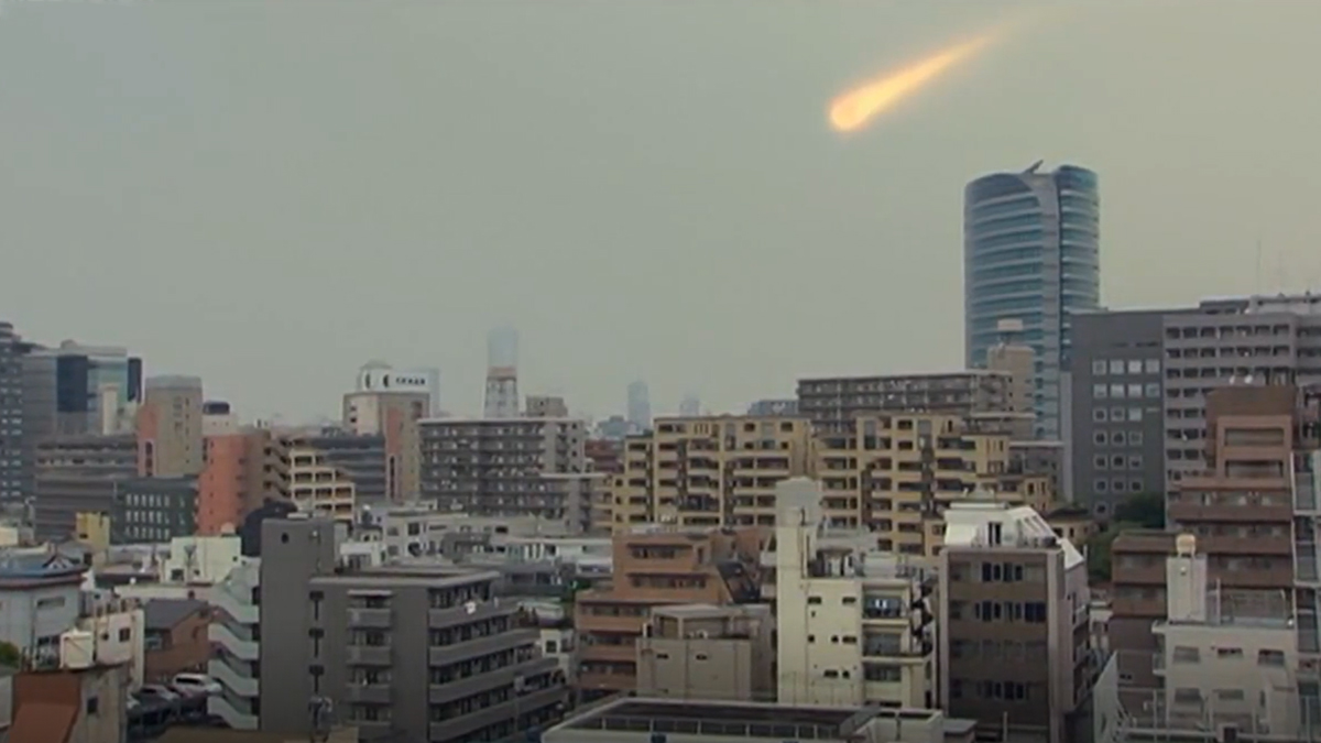Japanese Rogue Sky Objects: Fish Story (2009)