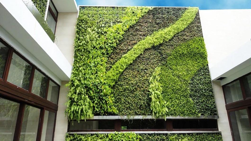 vertical green living wall supplier Australia