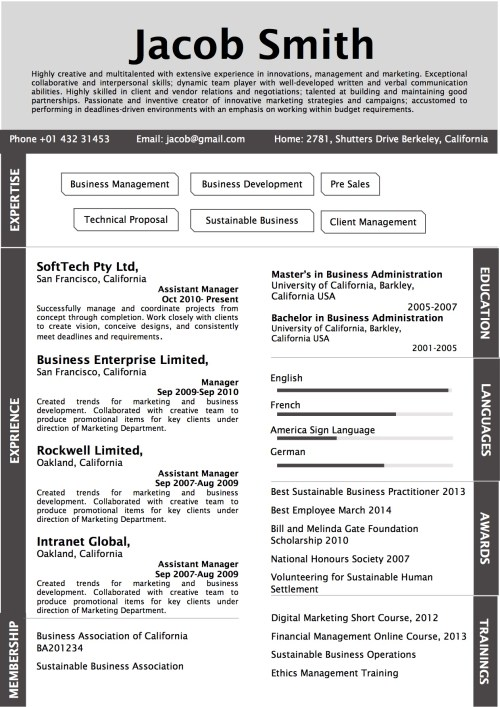 side_strap_grey_resume_word_template