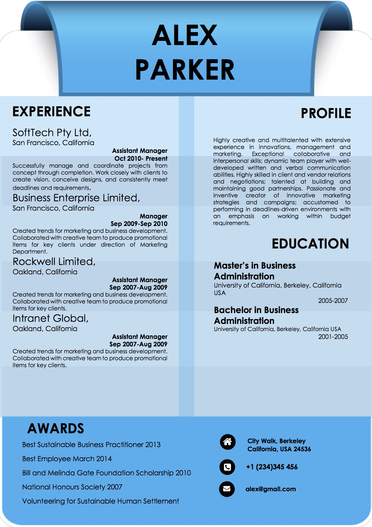 blue word professional resume format