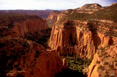 The Upper Gulch section of the Escalante Canyons within Grand Staircase-Escalante National Monument features sheer sandstone wal
