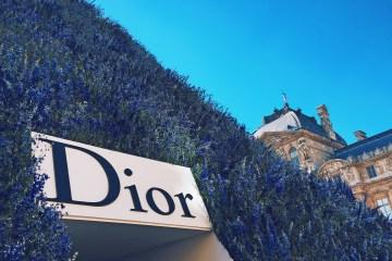 Dior SS 2016 Show