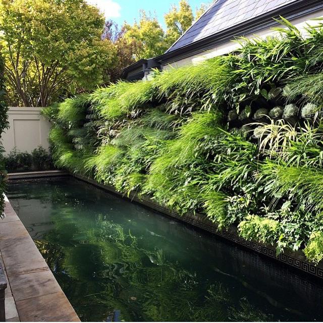 VT Home: Vertical Gardens
