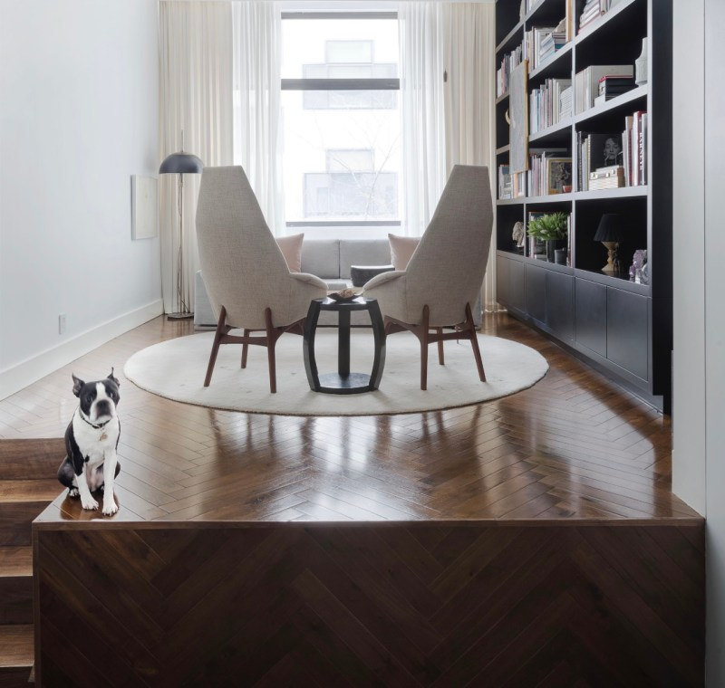 Sunlit loft in manhattan mid-century adrian pearsall cream boucle chairs, circle silk carpet and bookshelves and boston terrier named rufuslupo