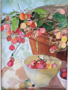 many small red, pink and yellow spheres hang from green leaf and stem into a cream bowl