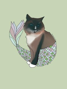A Himalayan cat dressed up as a mermaid