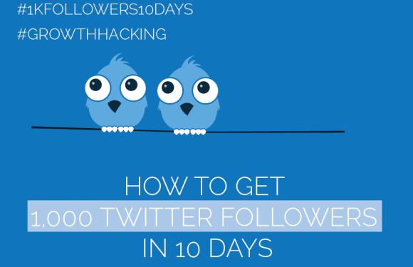 #Twitter Day 2 – Get 1,000 Twitter Followers in 10 Days [#1kfollowers10days #GrowthHacking]