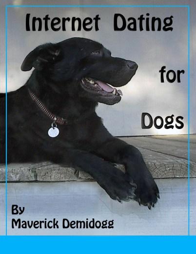 Book Cover for Maverick Demidogg