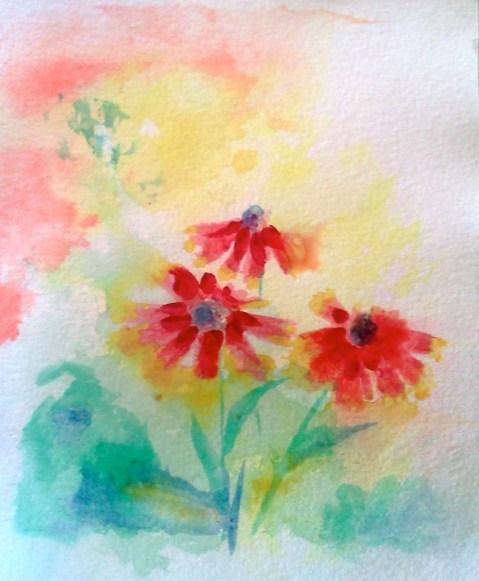 20140623 splash of color coneflowers