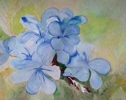 Blue 4 20140810c sm