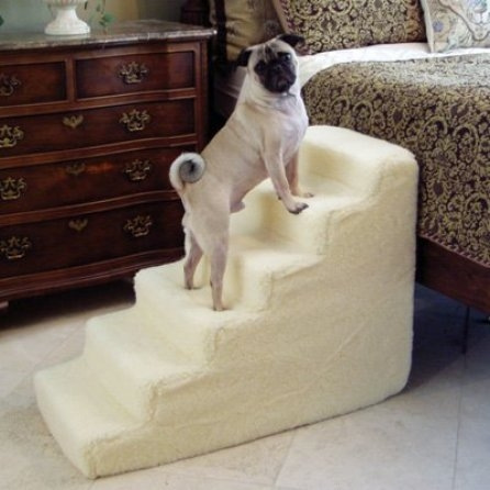 Dog Stairs For High Bed  Visual Hunt
