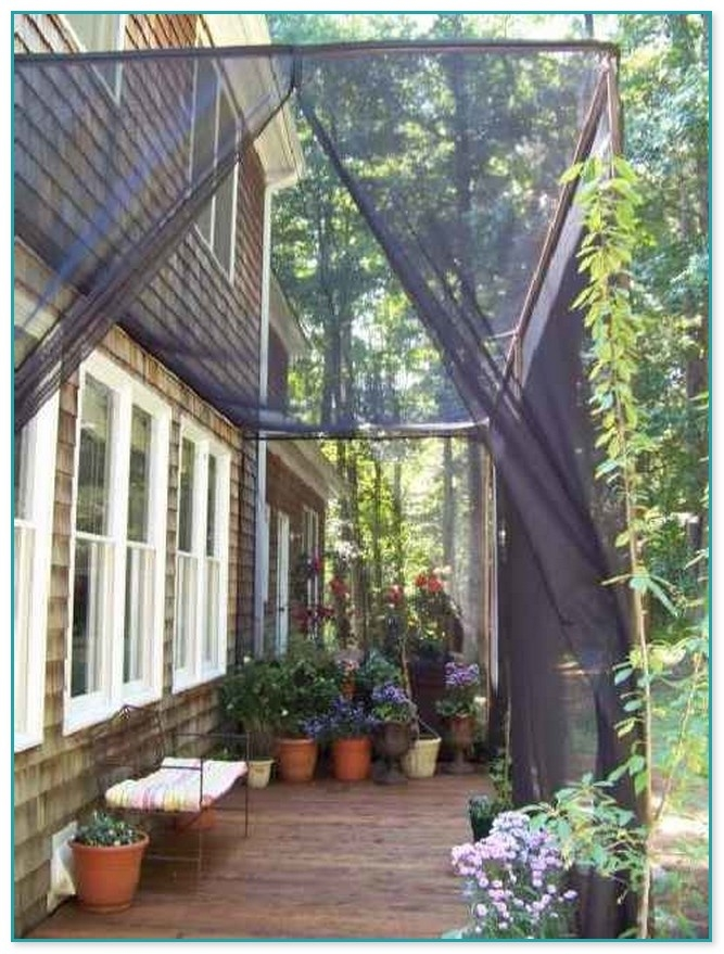 mosquito netting for patio you ll love