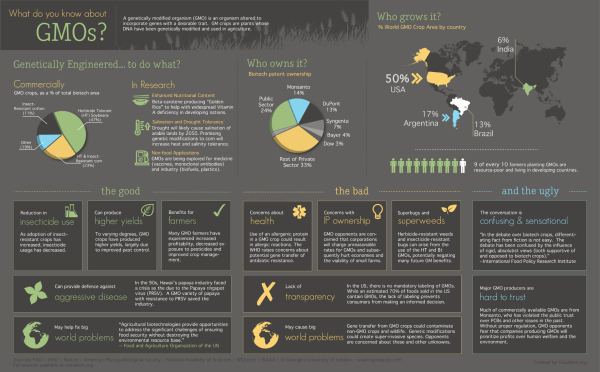 Infographics About GMO