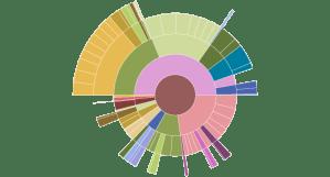 Sunburst Diagram  Charts  Data Visualization and Human