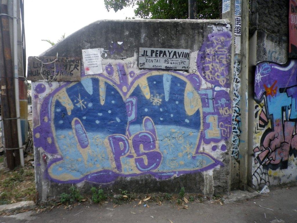 Jl.-Pepaya-VIIII-RT-0005-RW-05,-Jagakarsa,-Jaksel-(2)