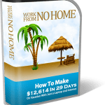 Work From No Home Review – Legit Or Scam ?