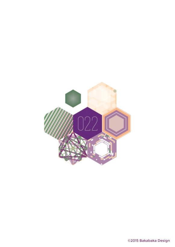 Hexagon-project-022
