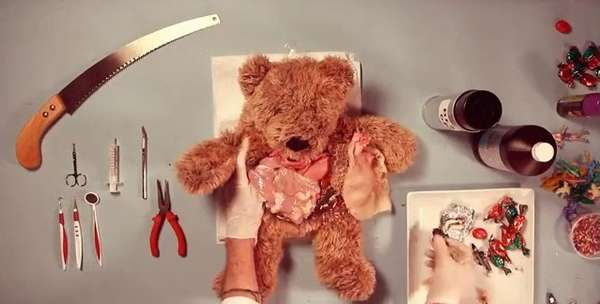 Anatomy Lessons: Teddy