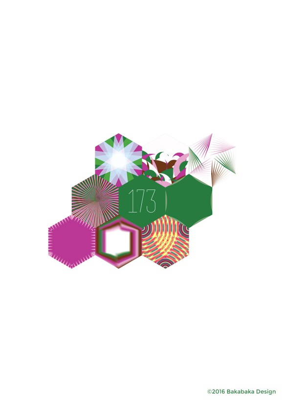 Hexagon-project-173