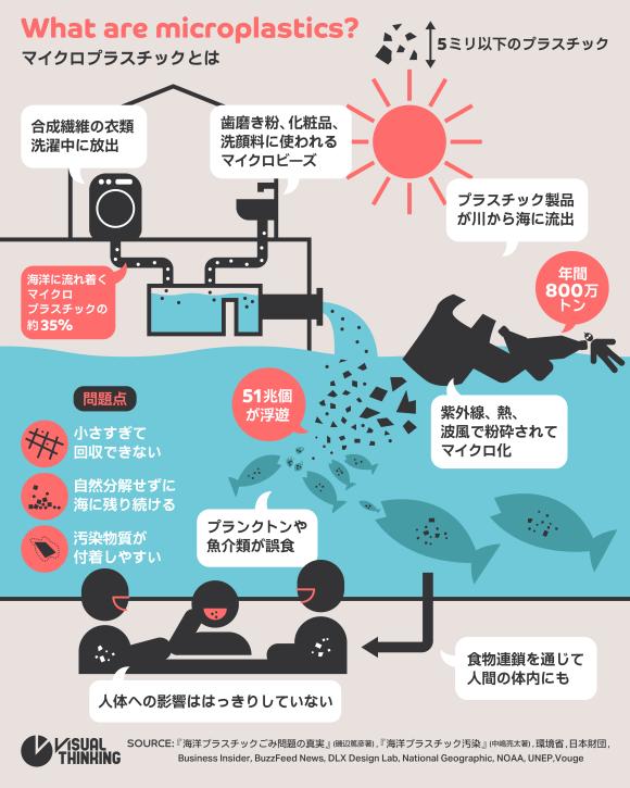 マイクロプラスチック インフォグラフィック