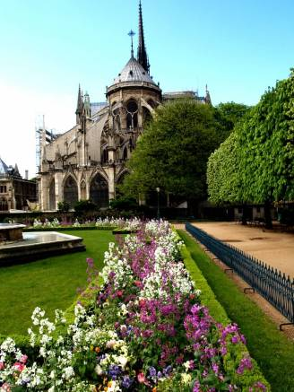 Photo of hidden spring gardens behind Notre Dame Cathedral, Paris   Marsha J Black