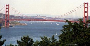 Golden Gate Bridge, San Francisco   Marsha J Black