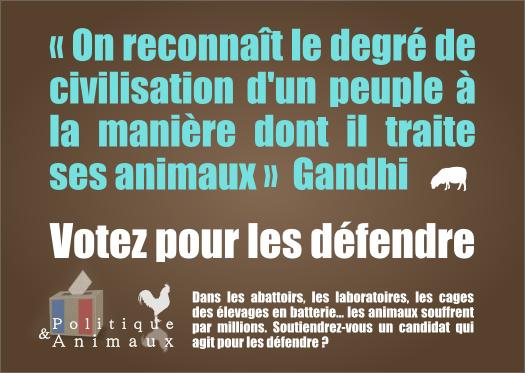 Kit information Politique  Animaux  thique et animaux