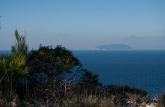 Svetac island