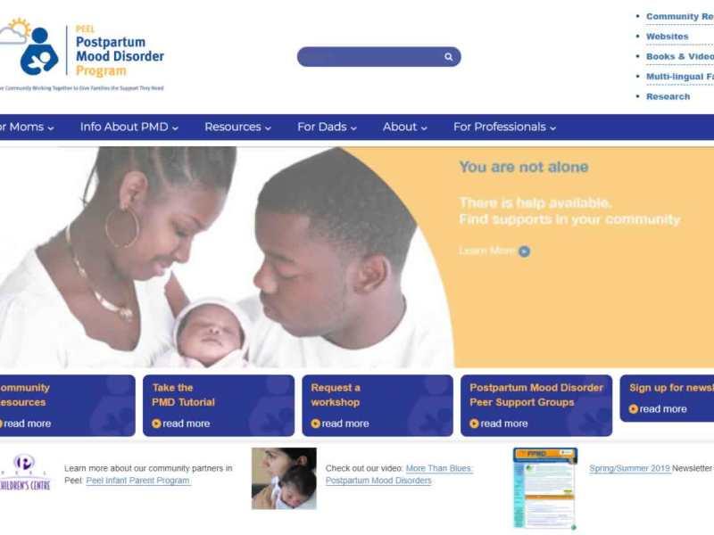 Peel Postpartum Mood Disorder Program
