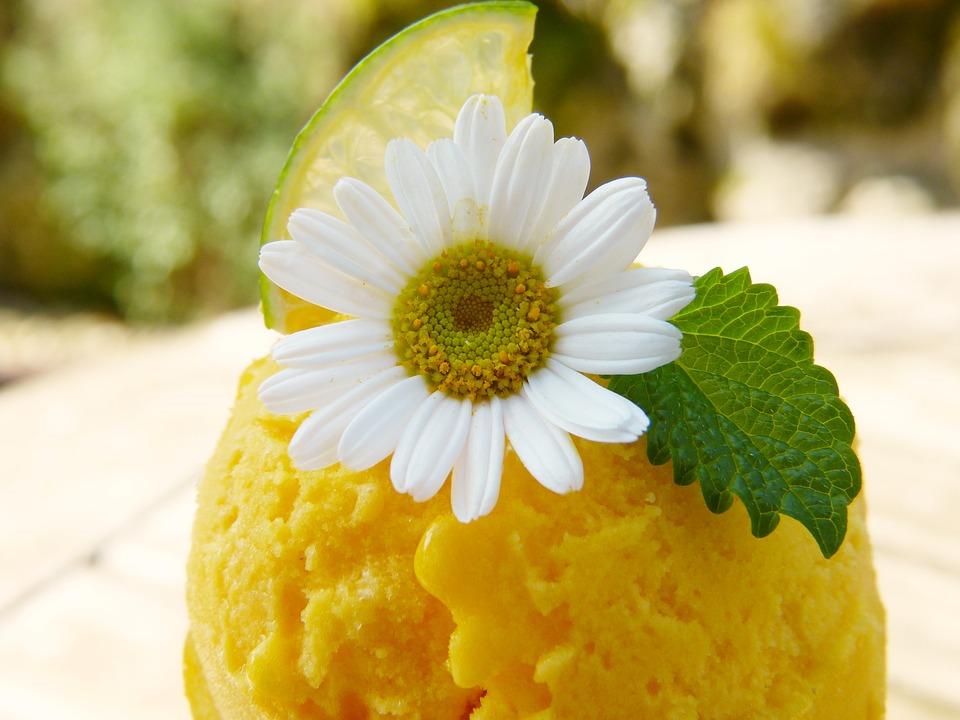 mango-ice-cream-Zuckerfreies Eis selbst machen – 6 gesunde Rezepte