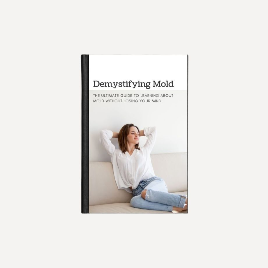 Demystifying Mold E-Book Product cover image