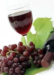 resveratrol - vörös bor