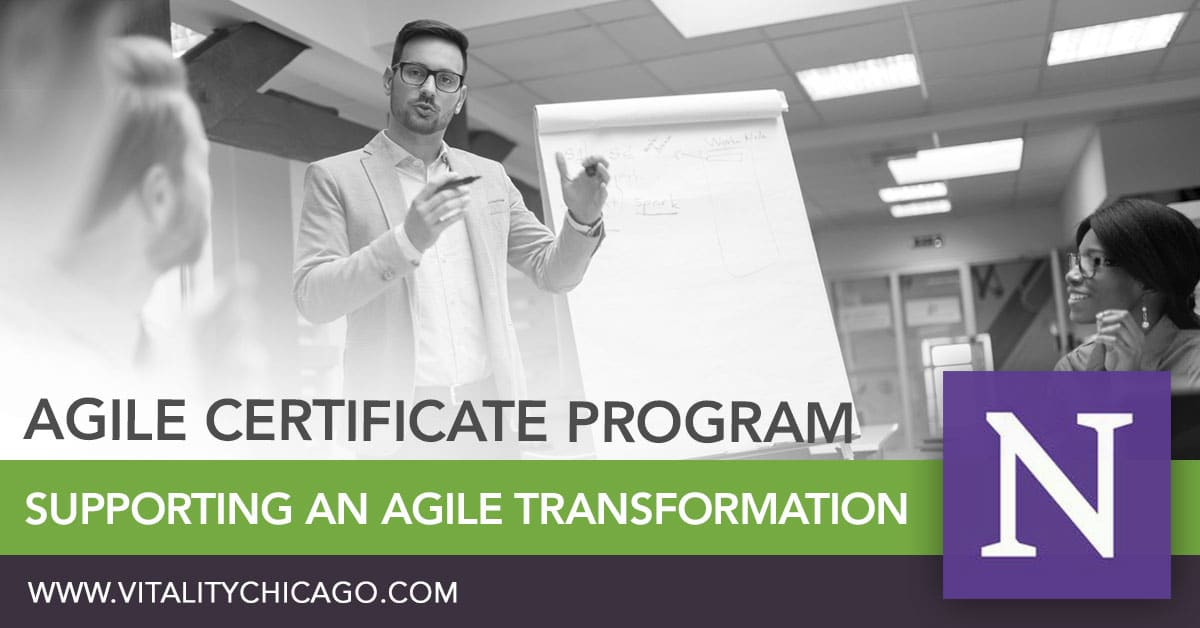 Supporting an Agile Transformation