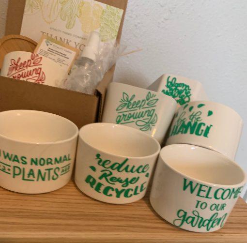 GIY Microgreen planter grow kits