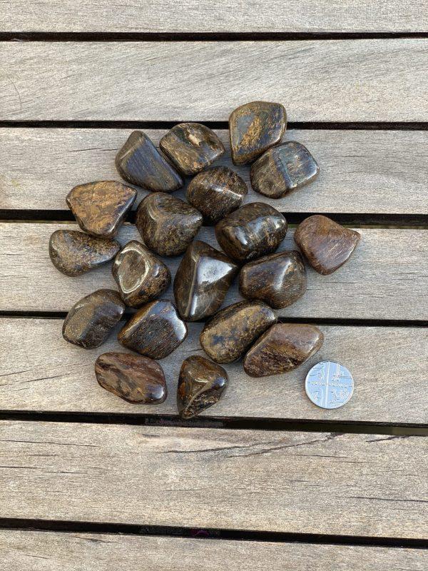 Bronzite with 5p