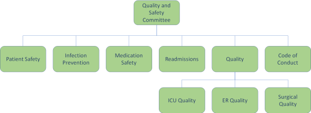 great hospital quality improvement program committee structure